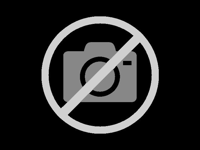 Gartenmöbel Set 2 - Zeitlose Gartenmöbel aus heimischem Holz