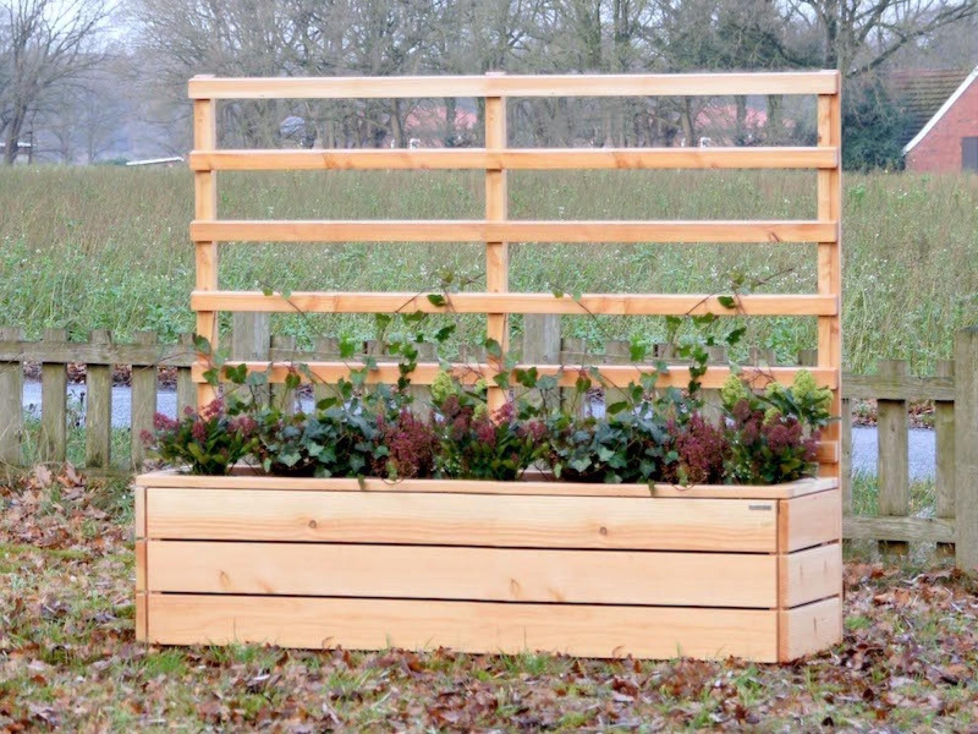 Sichtschutz Holz Mit Blumenkasten ~ Pflanzkasten mit Rankgitter  heimisches Holz  Made in Germany