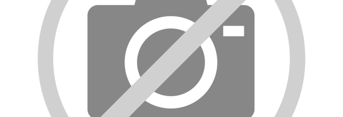 Binnen Markt Loungemobel Gartenmobel Pflanzkasten Sichtschutz